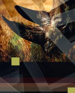 Rhino Dark